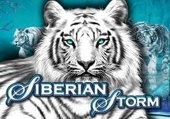 Siberian Storm Slots Online Logo