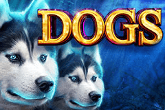 Dogs Slots Online