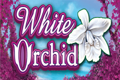 White Orchid Slots Online Logo