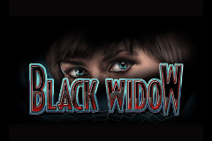 Black Widow Slots Online