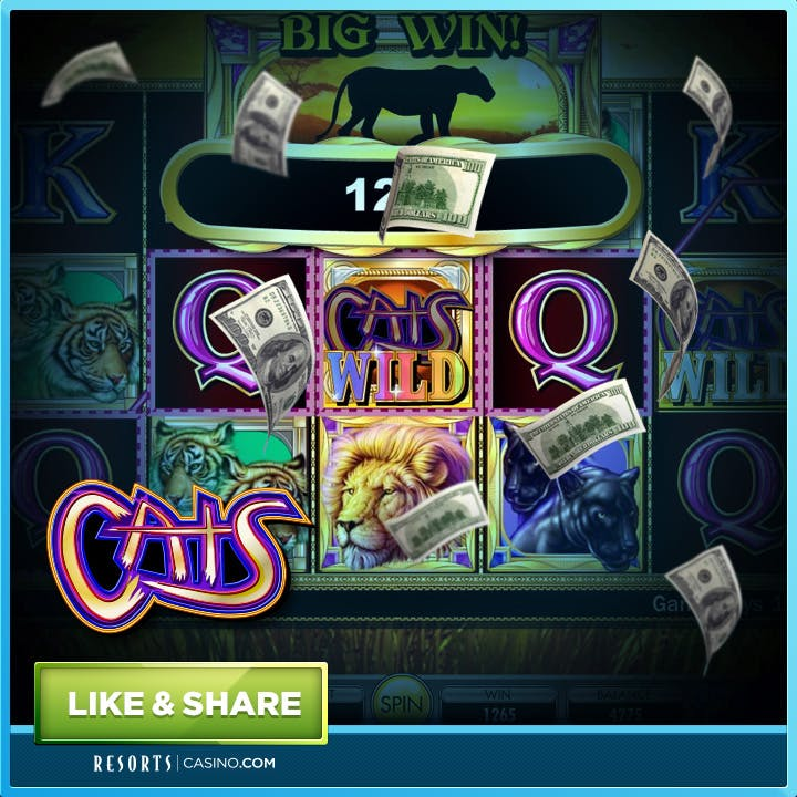 CATS SLOTS New Jersey Online Casino Game - Play For Free Now