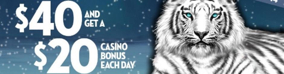 Caesars Online Casino & Sports Betting